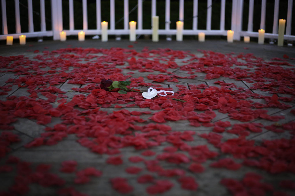 Rose laying on a bed of rose petals in a bandstand in Kent