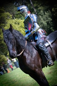 If you like the idea of dressing up, then check out our Knight in Shining Armour Proposal!