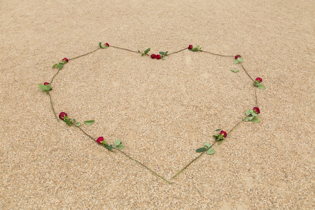 Heart made from long stemmed red roses