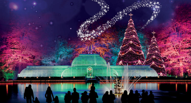 Kew Gardens - Christmas Proposal Ideas