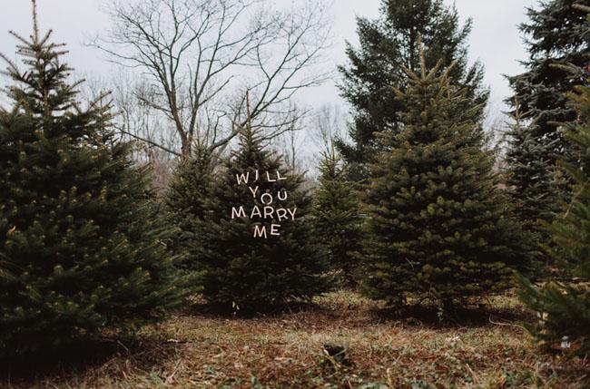 Christmas Tree Farm - The Most Romantic Christmas Proposal Ideas