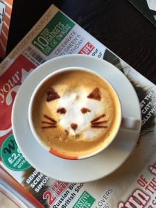 catcoffee